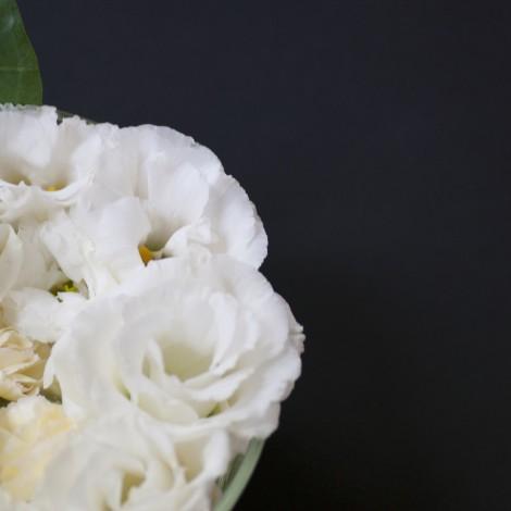 Flower0008