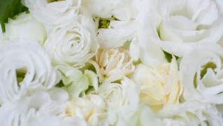 Flower0011