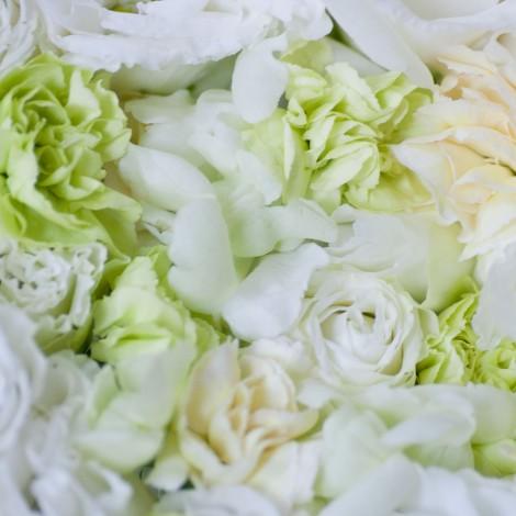 Flower0013
