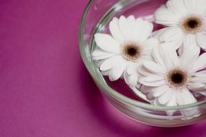 Flower0002