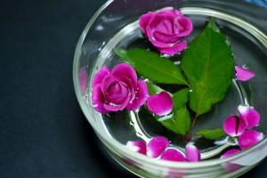 Flower0004